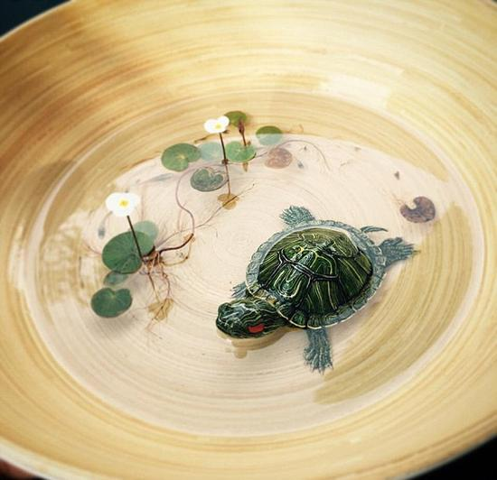 新加坡艺术家作逼真3D树脂画 被误会虐待动物(图)