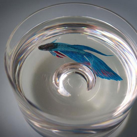 新加坡艺术家创作超逼真水生物画 鲜活如生(图)